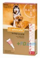 Advocate Large Dog 25 10-25k 3 pipettes