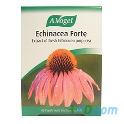 A Vogel Echinacea Forte - 40 Fresh Herb Tablets