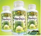 Moringa Powder 250mg Capsules x 120